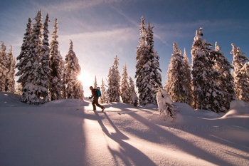 A person on a cross-country ski trail near Nelson, BC, with the sun shining through snowy trees.