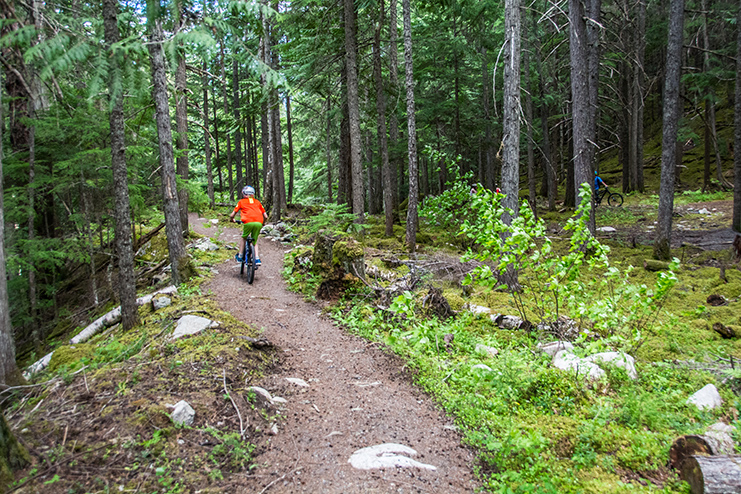 A person cycling along a winding dirt trail in the forest
