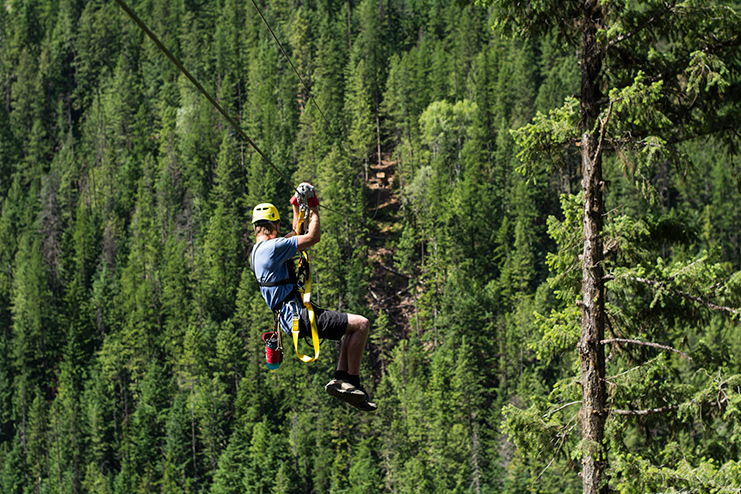 A man ziplining above a background awash with evergreen trees