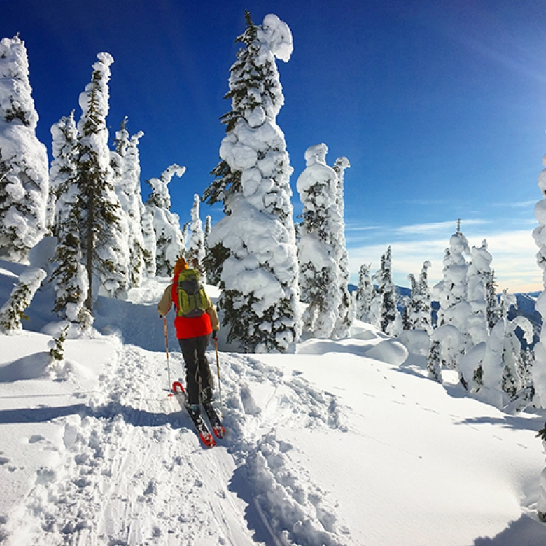 A person ski touring on a sunny day in the Whitewater Ski Resort backcountry.