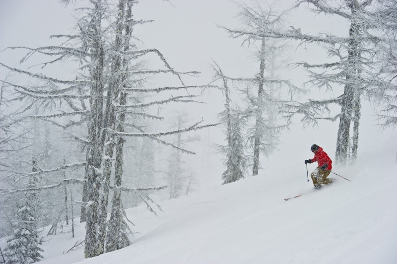Backcountry skiing in the Selkirk Mountains, Photographer David Gluns