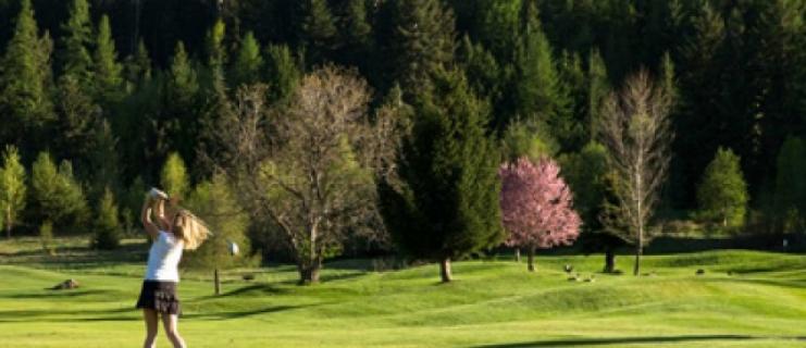 Nelson Golfing