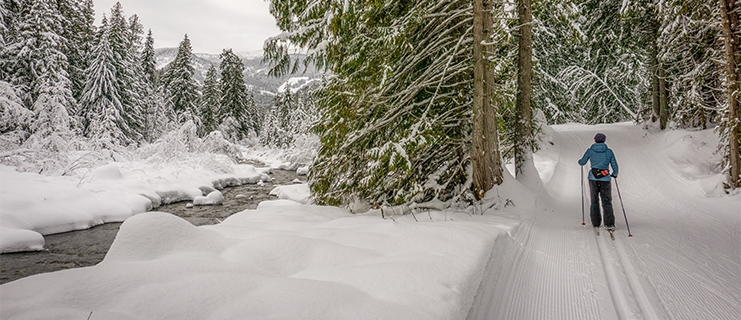 A nordic skier next to the creek at Nelson Nordic Ski Club.