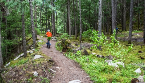 A boy riding his bike on trail in Kaslo, BC.