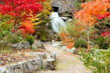 Cottonwood Falls Park, Nelson BC