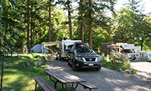 Nelson City Campground