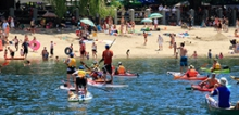 Nelson Paddle Board and Kayak Rentals